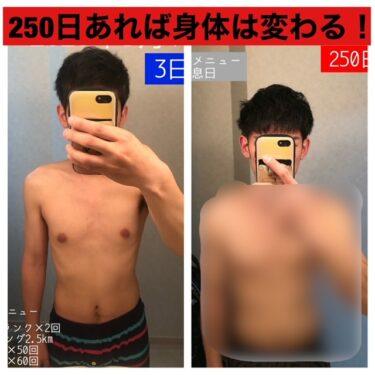 サラリーマンが筋トレを250日間続けたらそこそこ身体が変わった話